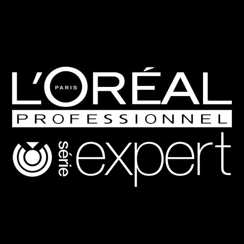 loreal professionnell serie expert atlanta hair salon