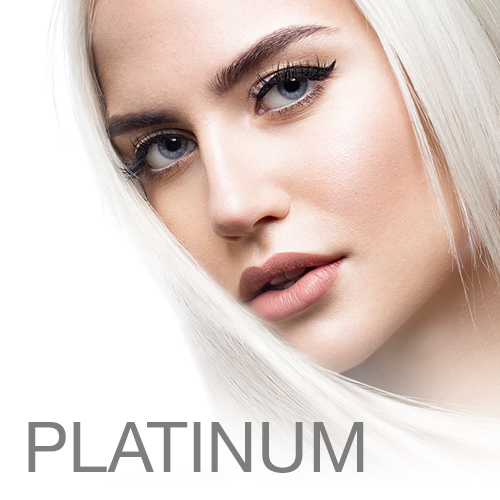 atlanta salon platinum loreal